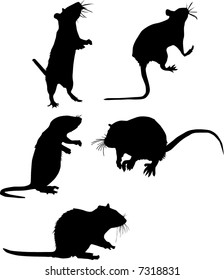 five rat silhouettes isolated on white background