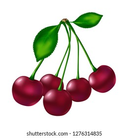 Five red ripe cherries with stem and with two green leafs on a white background