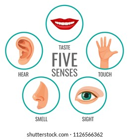 Five senses of human perception poster icons. Taste and hear