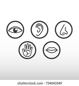 Five senses icon