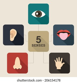 Five Senses Icon. Mind map style.