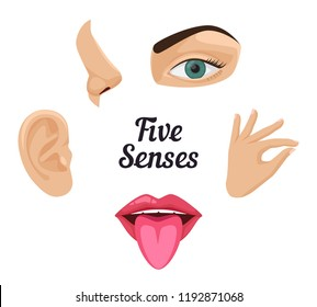 Five senses icon set: sight, hear, smell, taste, touch. Beautiful flat vector illustration: ear, mouth with tongue, nose, ear, eye, hand with fingers, lips. Human sense organs. Feels and sensations.