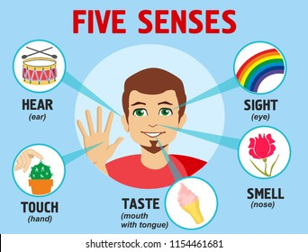 Five senses illustrations. Design with name, sight, hear, smell, taste, touch.