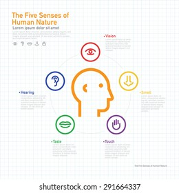 Five senses information concept on human colorful vector line icons and symbols set in grid layout template design