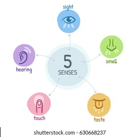 Five senses with simple hand drawn icons in a mind map design