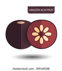 Flacourtia, Amazon acai fruit vector illustration