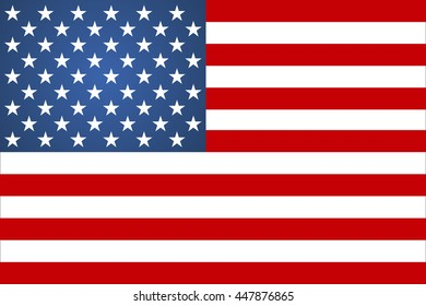 Flag american sign vector illustration flat style