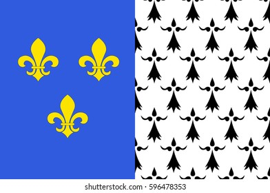Flag of Brest is a city in the Finistere departement in Brittany in northwestern France. Vector illustration