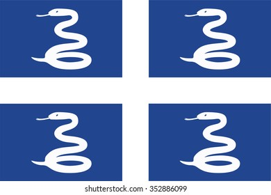 Flag of Martinique. Vector illustration.