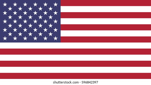 Flag United States of America flag vector