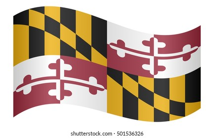 Flag of the US state of Maryland waving on white background, vector illustration. Maryland official flag, symbol. American patriotic element. USA banner. United States of America background.