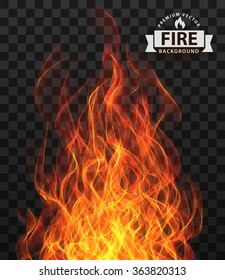 flame fire vector transparent background isolate red border texture hell vector fire flame frame border flame fire vector transparent background isolate red border texture hell danger devil explosion