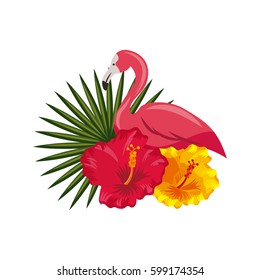 flamigo and tropical flowers and leaves over white background. colorful design. vector illustration