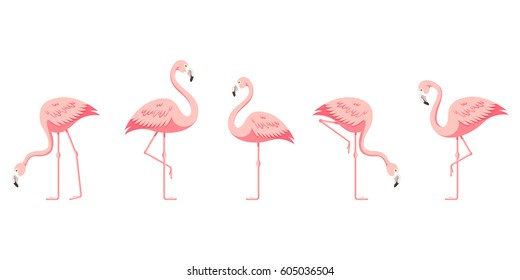 flamingo images  stock photos   vectors shutterstock beach background clipart free beach party background clipart