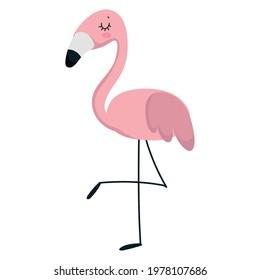 flamingo animal cartoon flat isolated