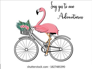flamingo bicycle hand drawn vector say yes to new adventures positive quote flower design margarita  mariposa stationery,mug,t shirt,phone case fashion slogan  style spring summer sticker and etc