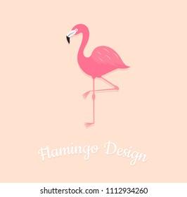 Flamingo bird on pink background. Vector illustrsation design