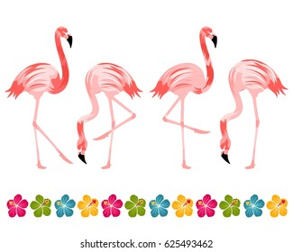 Flamingo Birds with Hibiscus Border