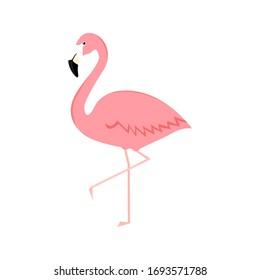 Flamingo cartoon vector illustration isolated on white