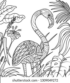 flamingo coloring page vector illustration 260nw