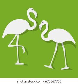 Flamingo couple white on a green background.