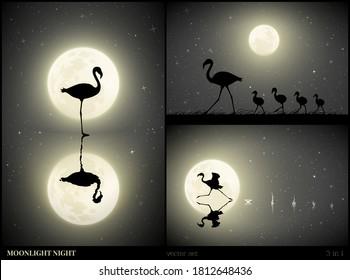 Flamingo family walking on moonlight night. Elegant bird silhouette and splashes on water. Running animal reflected in lake. Full moon in starry sky. Black and white vector illustration set