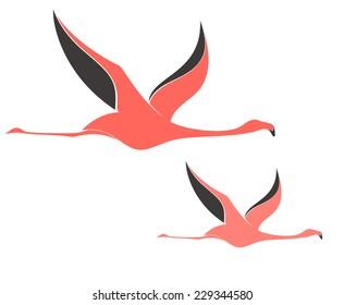 Flamingo. Flying birds on white background