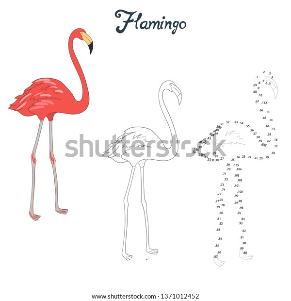 Flamingo Game Children Coloring Connect Numbers Stock Vector