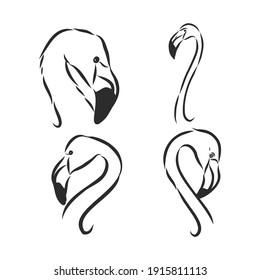 flamingo hand drawn vector llustration realistic sketch. flamingo, vector sketch illustration