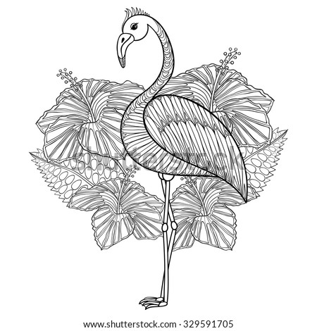 Flamingo Hibiskus Coloring Page Zentangle Illustartion Stock Vector