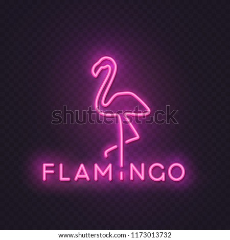 Flamingo Neon Wall Sign Template Isolated Stock Vector Royalty Free