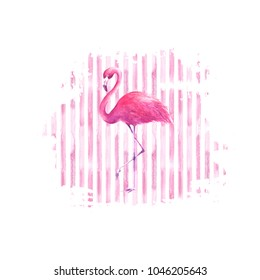 Flamingo on pink watercolor hand drawn striped spot background. Tropical exotic bird pink flamingo isolated on stripes background. Hand drawn illustration. Print for design, wrapping, cards, textile.