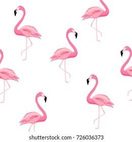 Flamingo pattern background. Flamingo poster design. Wallpaper, invitation cards, textile print vector illustration design
