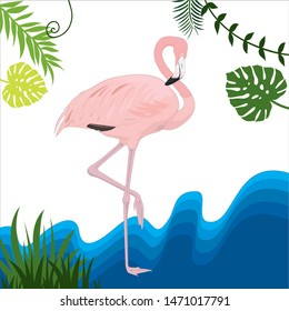 Flamingo is a type of wading bird in the family Phoenicopteridae, the only bird family order Phoenicopteriformes.