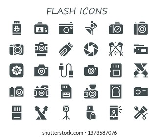 flash icon set. 30 filled flash icons.  Simple modern icons about  - Pendrive, Camera, Spotlight, Photo camera, Photos, Usb, Memory card, Sd card, Hard drive, Selfie, Flashlight