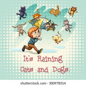 "Flashcard of idioms ""It's raining cats and dogs"""