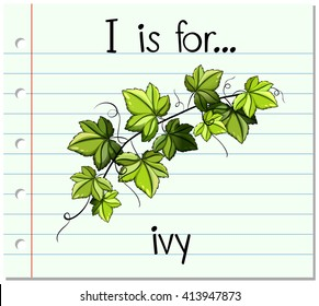 Flashcard I is for ivy
