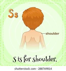 Flashcard letter S is for shoulder