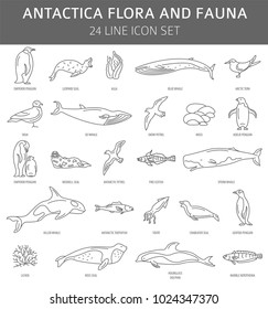 Flat Antarctica flora and fauna  elements. Animals, birds and sea life simple line icon set. Vector illustration