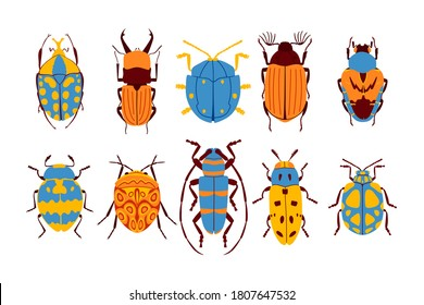 Flat beetles collection. Isolated on white background. Set of insects. Vector illustration