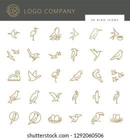 Flat birds icon set. Vector flat simple minimalistic bird logo. Birds icon, animal sign, symbol isolated on white background. Nature park, national zoo, pet shop logo, animal food store logo.
