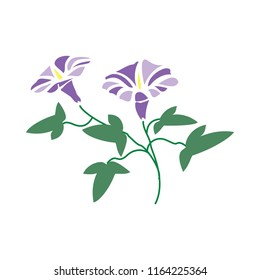 Flat colored Morning Glory flower. Vector image