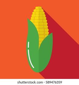 Flat corn icon. Corn vector