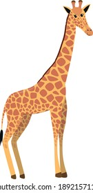 flat cute cartoon standing giraffe from side, vector isolated on white background, illustration for children