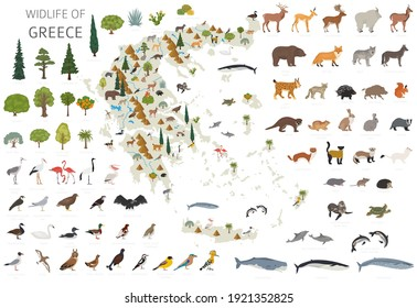 Flat design of Greece wildlife. Animals, birds and plants constructor elements isolated on white set. Build your own geography infographics collection. Vector illustration - Shutterstock ID 1921352825