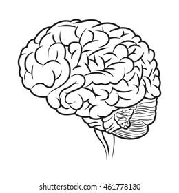 flat design human brain icon vector illustration