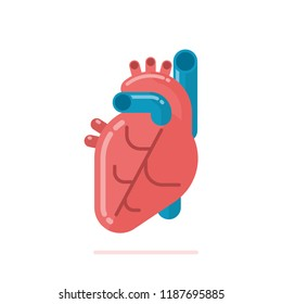 Flat design illustration of healthy human heart isolated on white