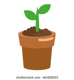 flat design tree sprout icon vector illustration