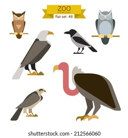 Flat design vector birds icon set. Owl, eagle, hawk, griffin, crow. Flat zoo children cartoon collection.