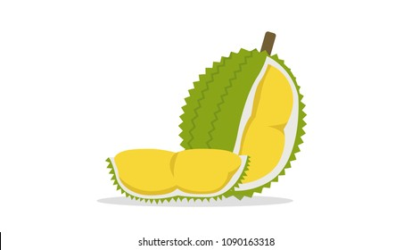 Flat Durian and cut piece vector with isolated white background.King of fruit.Tropical fruit.